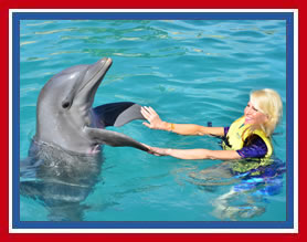 Trish Having Fun with Dolphins